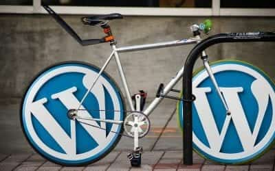 The Use of WordPress Plugins and Their Role in Functional Websites