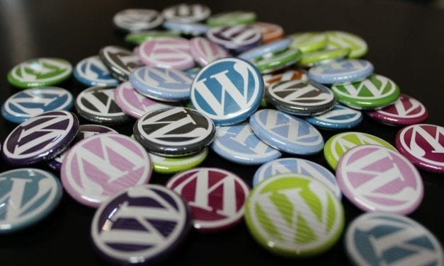 Checking An Improving Visibility Settings And URL Structures For Better WordPress SEO