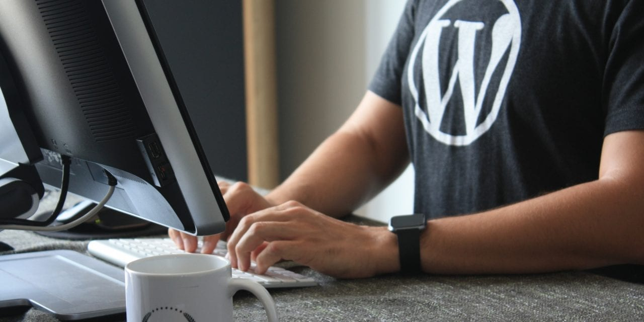 How A Web Development Company Can Optimise WordPress Sites